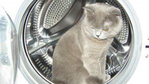 стиральная машина не набирает воду фото